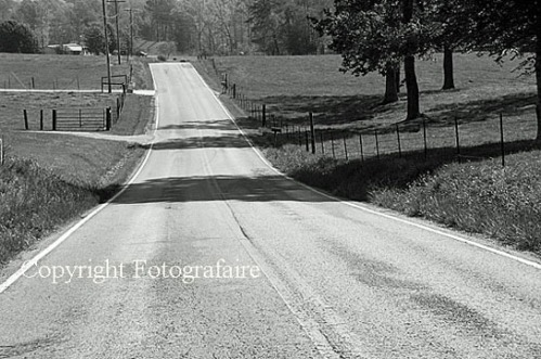 country road bw